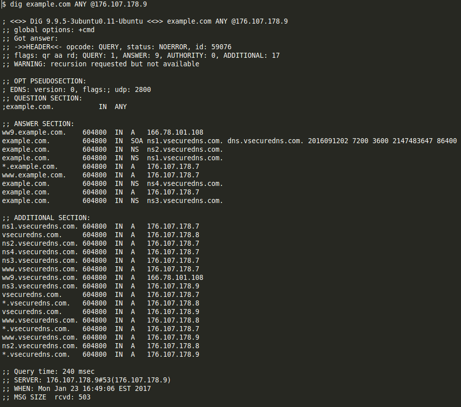 Examples of look-alike domains mimicking hosting providers and DNS services4.png